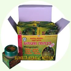 Herbal Ektrak Daun Maja Obat Atasi Penyakit Kulit  - 1Box(20sachet) + Salep Kulit Daun Maja