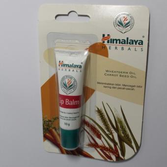 Lip Balm Himalaya Herbals