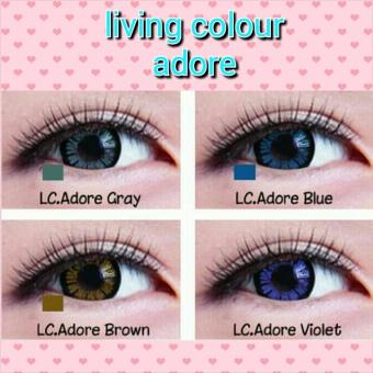 SOFTLENS LIVING COLOR TONE ADORE ANGEL LOVELY / SOFT LENS COLOUR -Brown