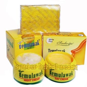 Temulawak Paket Cream Siang&Malam Plus Sabun Sedayu Kuning Original