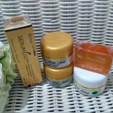 Walet Cream Super Gold Paket Ekonomis 4in1 + Serum Gold Hanasui 1pc