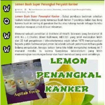 ZIEAqillah Fresh Sari Lemon Asli Penangkal Penyakit Kanker,Mencegah Anemia - 3