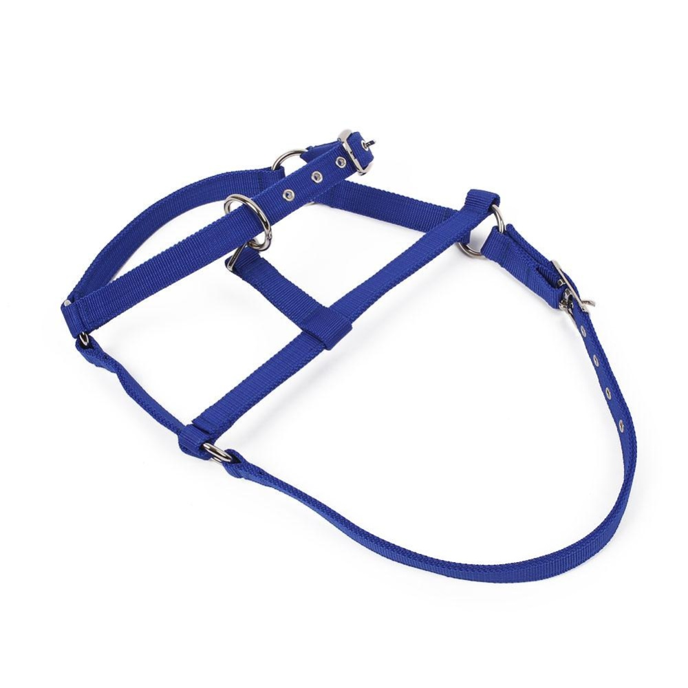Aukey 0 shipping fee Horse Riding Woven Belts Bridle Adjustable Halter Headstall Horsing Accessories - intl