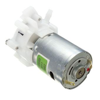 ... Mini Motor Pompa Air Pompa Roda Gigi Reversibel Semprotan Cat Dasar Akuarium DC 4 V -