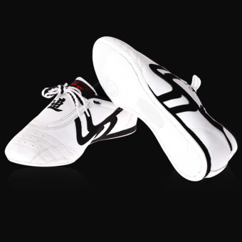 harga New Adapula Taekwondo Karate Kung Fu Tai Chi Pelatihan Sepatu Sneakers - Internasional Lazada.co.id