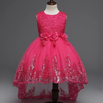 Princess Flower Girl Dress For Wedding Party Bridesmaid Kids Bow Trailing Lace Tulle Tutu Dress