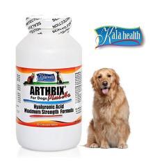 Arthrix Plus HA 90 Tablet