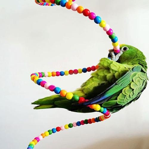 Bluelans(R) Multicolor Wood Beads Parrot Bouncing Cage Toy Bird Spiral Ladder Parakeet Toy - intl