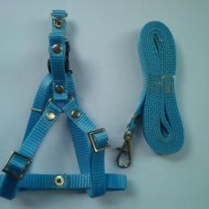 Harness Y uk S + Leash Biru Muda untuk Kucing, Kelinci, Musang, Puppy Small breed