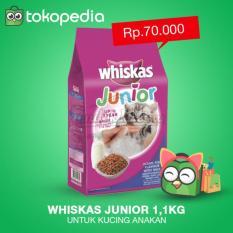 Makanan Kucing - Whiskas Junior 1-1Kg