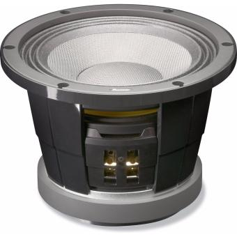 """Pioneer Stage 4 TS-W252PRS 10"""" Subwoofer"""