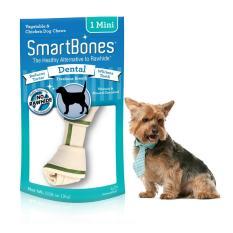 Smartbones Dental Mini 1
